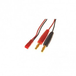Cable de charge bec