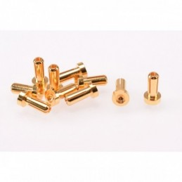 PK 4mm Gold Male 12mm