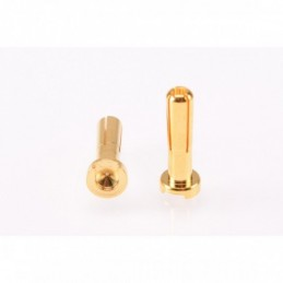 PK 4mm Gold Male 18mm